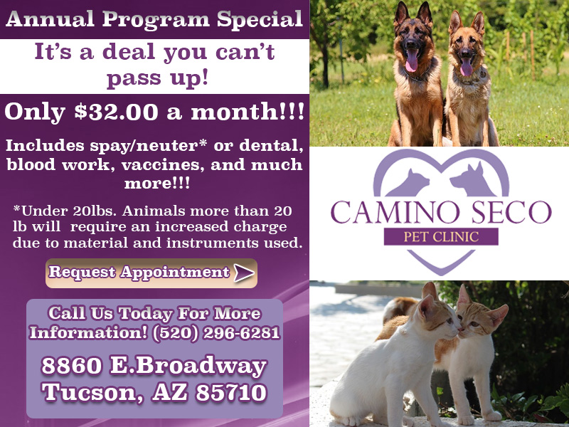 Camino Seco Annual Program Special 2016